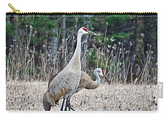 Carry-all Pouch featuring the photograph Sandhill Cranes 1166 by Michael Peychich