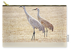 Carry-all Pouch featuring the photograph Sandhill Cranes Of Montana by Jennie Marie Schell