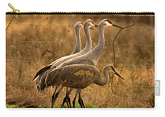 Sandhill Cranes Texas Fence-line Carry-all Pouch by Robert Frederick