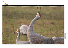Carry-all Pouch featuring the photograph Sandhill Delight by Shari Jardina