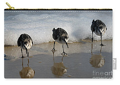 Sandpipers Feeding Carry-all Pouch