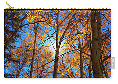 Santa Fe Beauty II Carry-all Pouch by Stephen Anderson