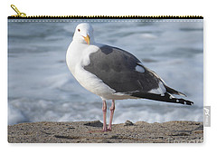 Santa Monica Seagull Carry-all Pouch by Margaret Brooks