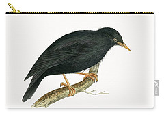 Sardinian Starling Carry-all Pouch by English School