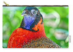 Satyr Tragopan  Carry-all Pouch by Judy Kay