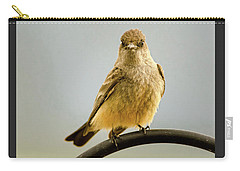 Say's Phoebe Ranch Bird Carry-all Pouch