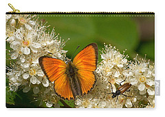 Carry-all Pouch featuring the photograph Scarce Copper 2 by Jouko Lehto