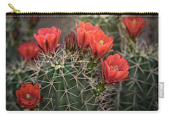 Carry-all Pouch featuring the photograph Scarlet Hedgehog Cactus  by Saija Lehtonen