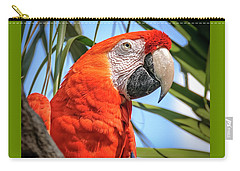 Carry-all Pouch featuring the photograph Scarlet Macaw by Steven Sparks
