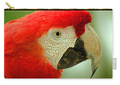 Scarlett Macaw South America Carry-all Pouch