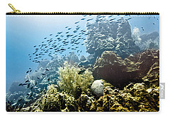 Carry-all Pouch featuring the photograph School Fish Rainbow by Perla Copernik