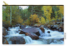 Carry-all Pouch featuring the photograph Scott Gomer Creek At Guanella Pass by Marie Leslie