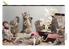 Scottish Fold Cats Carry-all Pouch by Evgeniy Lankin
