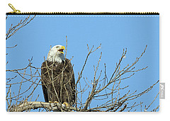 Screeching Eagle Carry-all Pouch by Brook Burling