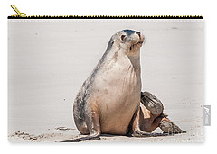 Sea Lion 1 Carry-all Pouch by Werner Padarin