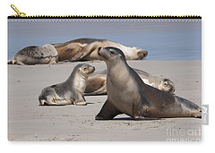 Carry-all Pouch featuring the photograph Sea Lions by Werner Padarin