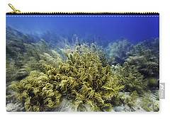 Carry-all Pouch featuring the photograph Sea Rod Corals  by Perla Copernik
