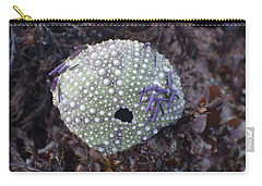 Sea Urchin Shell Carry-all Pouch