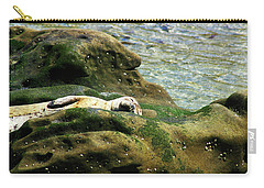 Carry-all Pouch featuring the photograph Seal On The Rocks by Anthony Jones