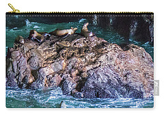 Carry-all Pouch featuring the photograph Seal  Rock by Jonny D