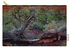 Sedona #1 Carry-all Pouch