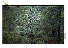 Sedona Tree #1 Carry-all Pouch