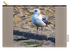 Carry-all Pouch featuring the photograph See The Gull by Kendall McKernon
