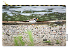 Carry-all Pouch featuring the photograph Semipalmated Plover by Ricky L Jones