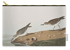 Semipalmated Sandpiper Carry-all Pouch by John James Audubon