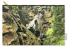 Sequoia Fallen Tree Carry-all Pouch