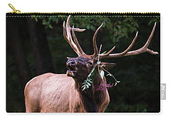 Carry-all Pouch featuring the photograph Serenade  by Andrea Silies