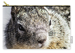 Serious Squirrel Carry-all Pouch