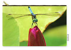 Settled Dragonfly Carry-all Pouch
