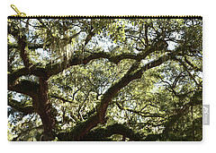 Shady Side Of Town Carry-all Pouch by Skip Willits