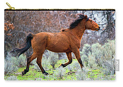 Carry-all Pouch featuring the photograph Shaggy And Proud by Mike Dawson