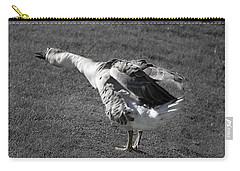 Carry-all Pouch featuring the photograph Shake It Out by Phyllis Denton