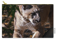 Sharpening Claws Carry-all Pouch