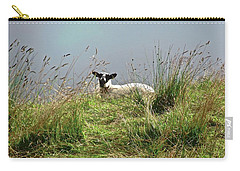 Sheep Carry-all Pouch by Stephanie Moore