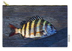 Carry-all Pouch featuring the photograph Sheepshead Fish by Laura Fasulo