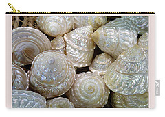 Shells - 4 Carry-all Pouch