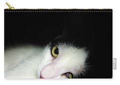 Shelter Cat Carry-all Pouch