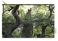 Sherwood Forest Carry-all Pouch by Martin Newman