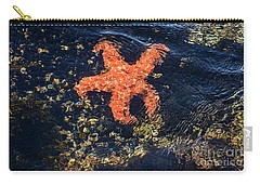 Carry-all Pouch featuring the photograph Shimmering Starfish by Susan Wiedmann