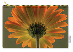 Shine Bright Gerber Daisy Square Carry-all Pouch by Terry DeLuco