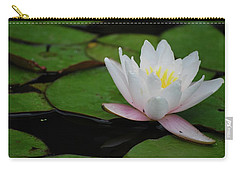 Carry-all Pouch featuring the photograph Shining Bright by Amee Cave
