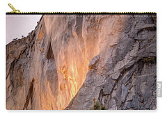 Shiny Horsetail Falls Carry-all Pouch