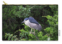 Shore Bird Roosting In A Tree Carry-all Pouch