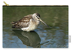 Carry-all Pouch featuring the photograph Short-billed Dowitcher by Sharon Talson
