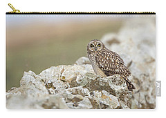 Short-eared Owl In Cotswolds Carry-all Pouch
