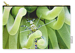 Carry-all Pouch featuring the photograph Shrimp And The Anemone by Amy McDaniel